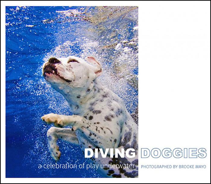 diving_doggies
