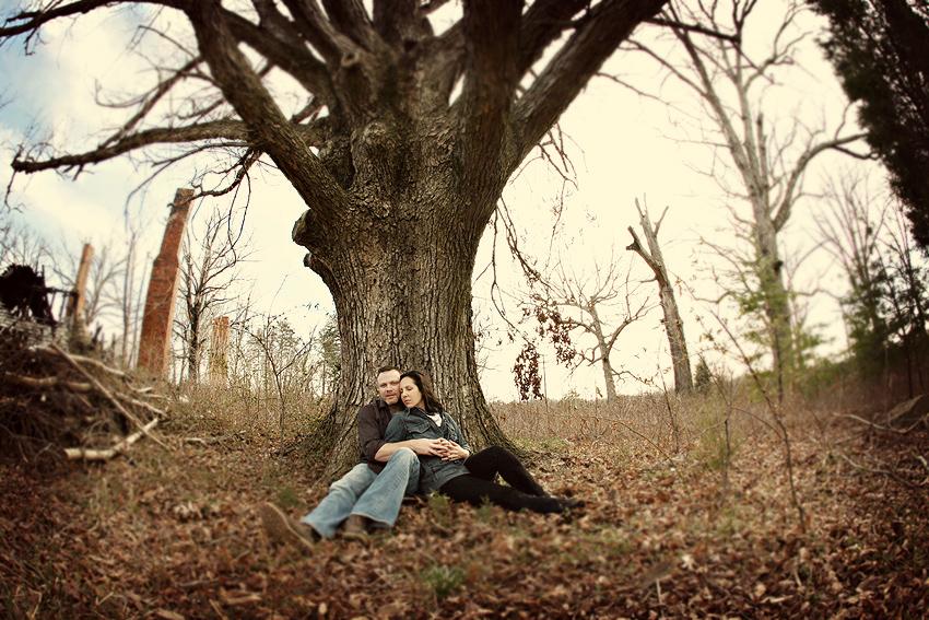 b_d_tree_12
